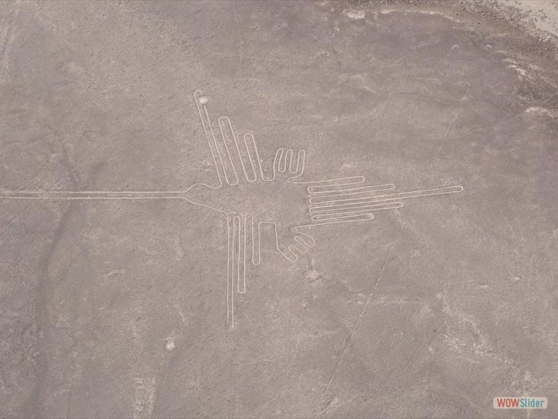 Humming Bird - Nazca Lines